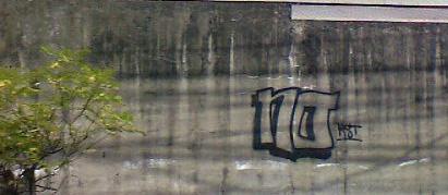nunoc5.jpg